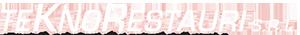 teknorestauri logo negativo